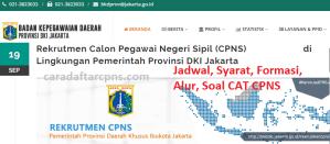 Pengumuman Hasil SKD CPNS Pemprov DKI Jakarta 2019 2020