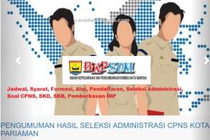 Pengumuman Hasil SKB CPNS Pemkot Pariaman Formasi 2019