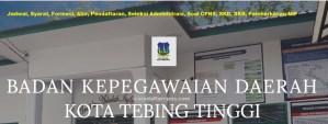 Hasil Seleksi Administrasi CPNS Kota Tebing Tinggi 2019