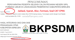 Jadwal SKB CPNS Kabupaten Bireuen 2019 2020