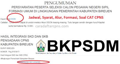 Jadwal Pendaftaran CPNS Kabupaten Bireuen 2021 Lulusan SMA SMK D3 S1 S2