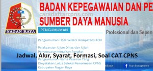 Pengumuman Hasil SKB CPNS Kabupaten Nagan Raya Formasi 2019