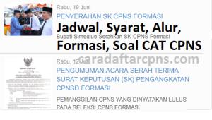 Pengumuman Hasil SKB CPNS Kabupaten Simeulue Formasi 2019