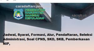 Pengumuman Hasil SKB CPNS Kabupaten Bangkep Formasi 2019