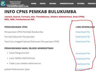 Pengumuman CPNS Kabupaten Bulukumba 2021 Lulusan SMA SMK D3 S1 S2