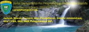 Pengumuman Hasil Akhir CPNS Kabupaten Buru Formasi 2019