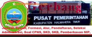 Pengumuman CPNS Kabupaten Halmahera 2021 Lulusan SMA SMK D3 S1 S2