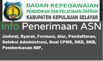 Pengumuman CPNS Kabupaten Selayar 2021 Lulusan SMA SMK D3 S1 S2
