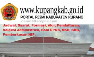 Pengumuman Hasil SKB CPNS Kabupaten Kupang Formasi 2019