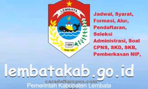 Pengumuman Hasil Akhir CPNS Kabupaten Lembata Formasi 2019