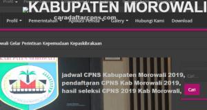 Pengumuman Hasil SKB CPNS Kabupaten Morowali Formasi 2019