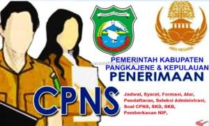 Pengumuman CPNS Kabupaten Pangkep 2021 Lulusan SMA SMK D3 S1 S2