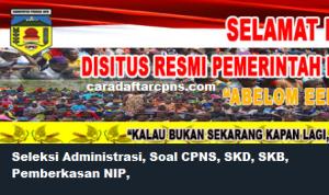 CPNS 2019 Kabupaten Puncak Jaya