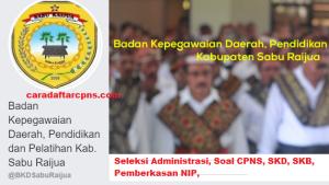 Pengumuman CPNS Kabupaten Sabu Raijua 2021 Lulusan SMA SMK D3 S1 S2
