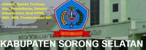 Pendaftaran CPNS Kabupaten Sorong Selatan 2019