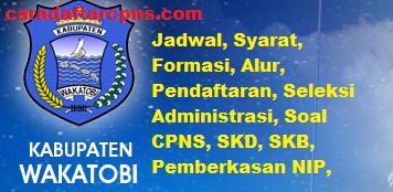 Pengumuman CPNS Kabupaten Wakatobi 2021 Lulusan SMA SMK D3 S1 S2