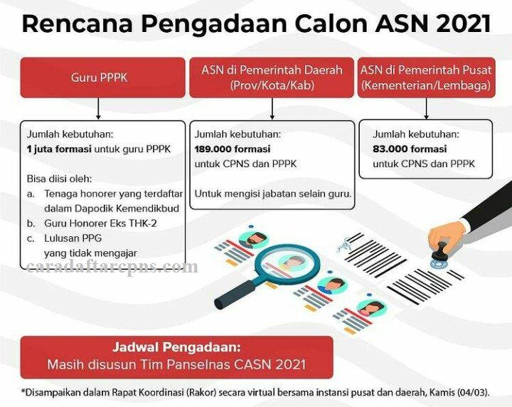 Rincian Formasi CPNS dan PPPK 2021