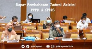 Seleksi CPNS PPPK 2021 Siap dimulai