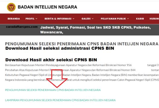 Hasil Seleksi Administrasi CPNS BIN 2021