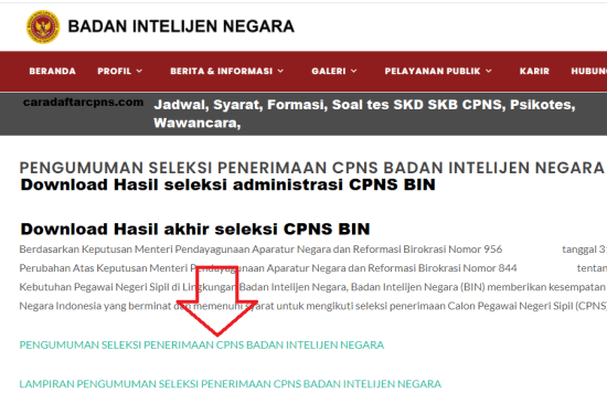 Pengumuman SKD CPNS BIN 2021