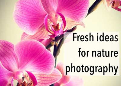 10 Fresh ideas for nature photography