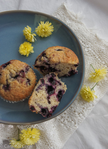 Quick blueberry muffin recipe with wild blueberries and maple syrup for extra flavor. Fast and easy to make and sure to satisfy the sweet tooth!