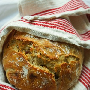 Very easy no-knead bread recipe with a crunchy crust and a subtly sweet flavor and moist texture. Homemade bakery style bread with so little effort!