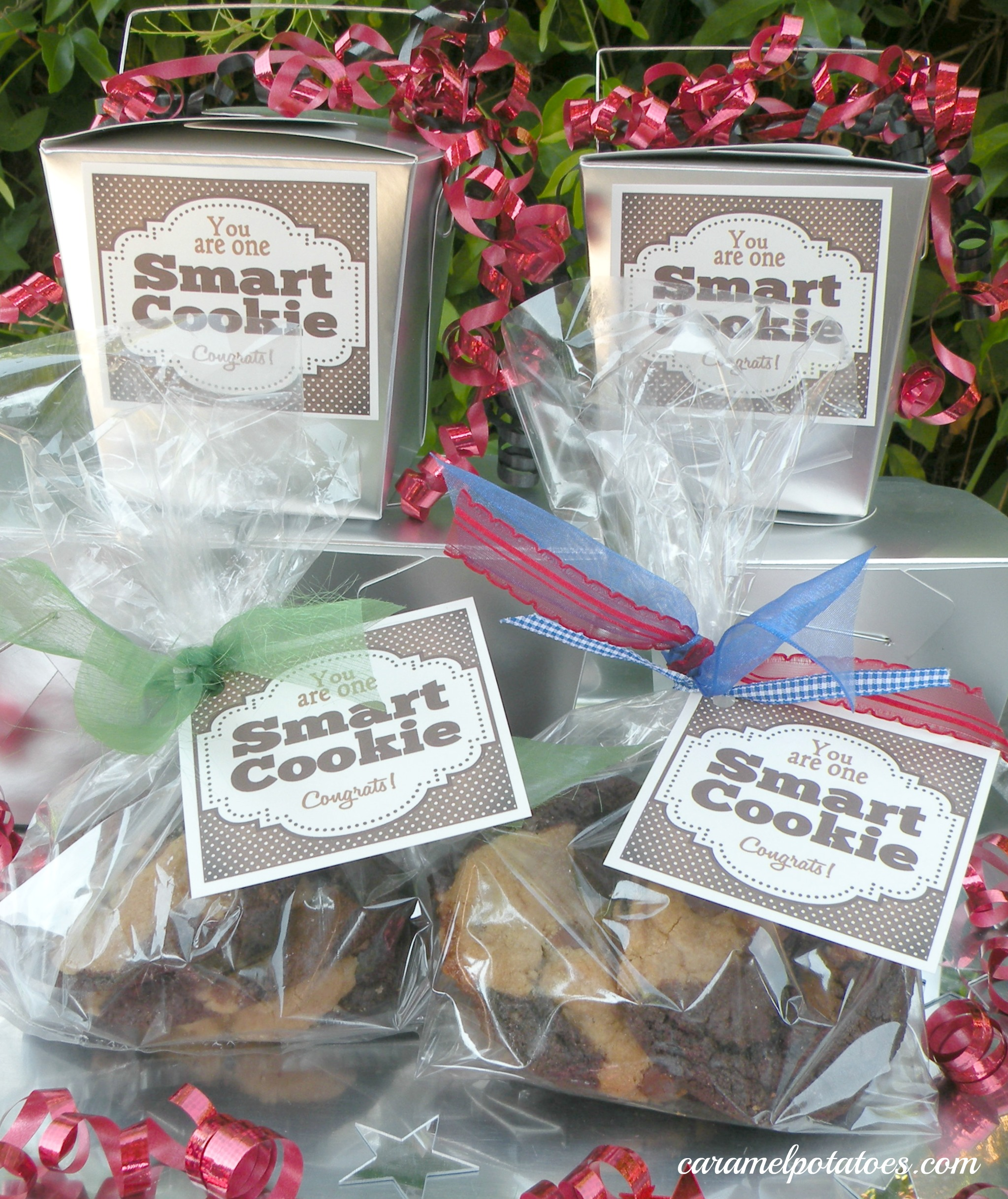 picture regarding You're One Smart Cookie Printable titled Caramel Potatoes » Intelligent Cookie Commencement Tag Printable