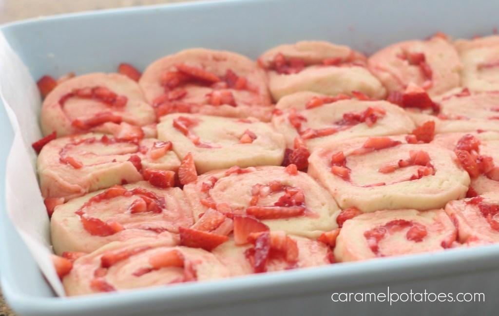 strawberry rolls strawberry cake 073
