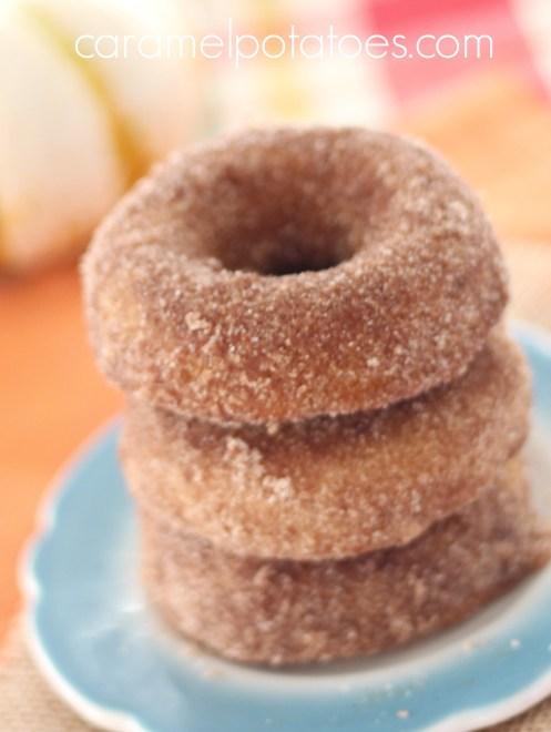 Pumpkin Donuts 002