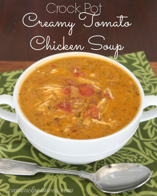 chicken tomato soup 074