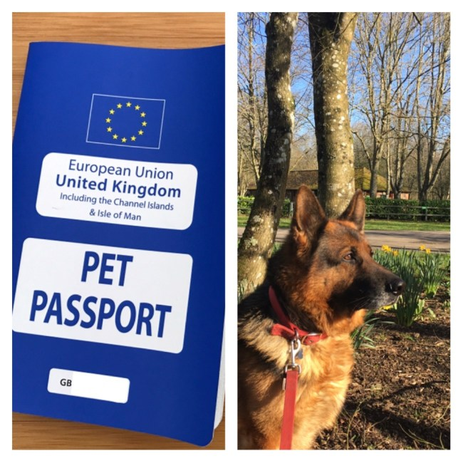 Pet passport EU travel