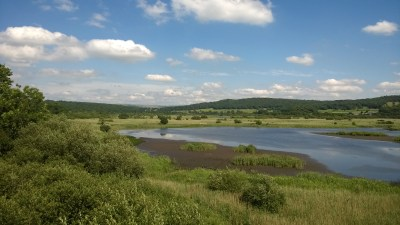 RSPB-Leighton-Moss-and-Morecambe-Bay-Nature-Reserve-Credit