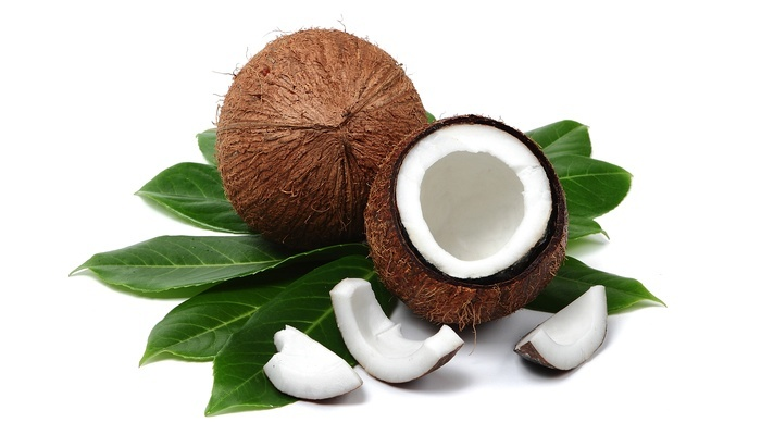 CarbSmart Coconut Shell and Meat