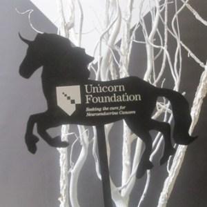Unicorn Foundation 2011