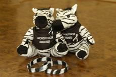 Stuffed Animal Zebra and bracelet