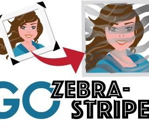 Go Zebra Striped Graphic