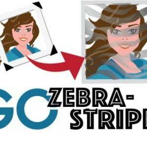 go-zebra-striped-graphic-2_twitter