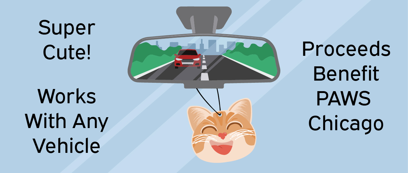 Car Cuties in Rear View Mirror