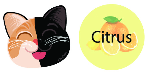 Citrus with Orange and Black Cat