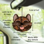 Car Cuties in Car Chocolate