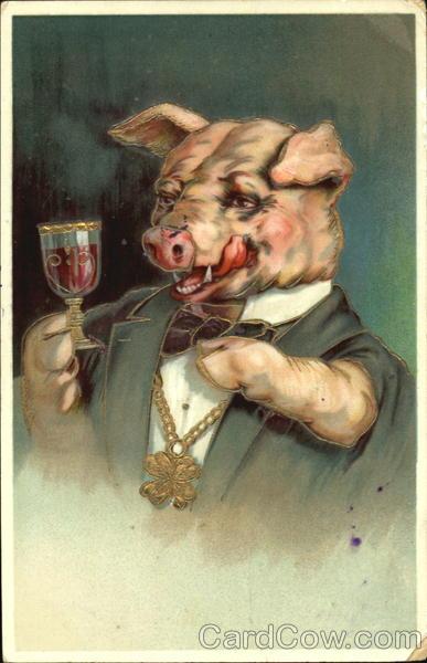 Pig Drinking Wine Pigs