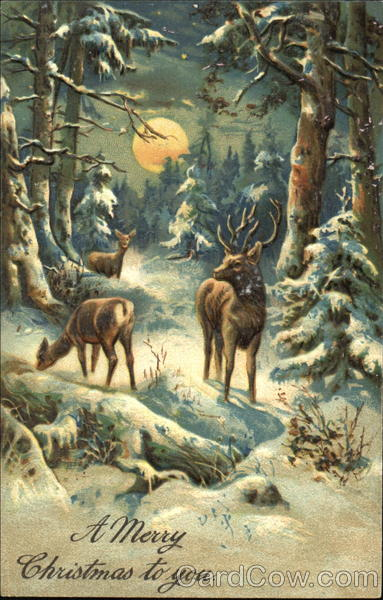 Snowy Forest Scene With Deer Christmas