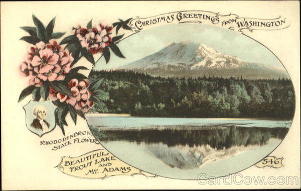 Christmas Greetings From Washington State Flowers Amp Seals