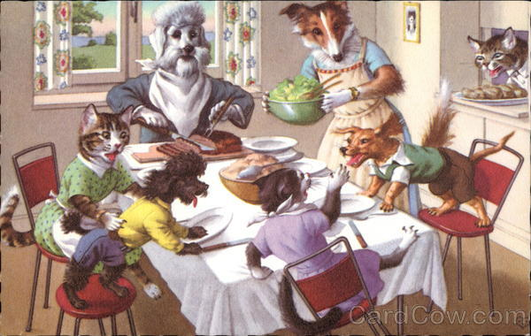 Dogs And Cats Eating At Table
