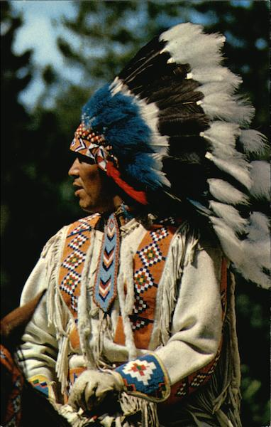 A North American Indian In Traditional Head Dress Native