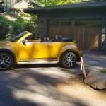2018_VW_Beetle_Convertible_Dune_063