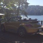 2018_VW_Beetle_Convertible_Dune_078