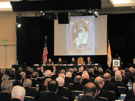 picture from Cardinal Sean O'Malley's blog about the USCCB Assembly