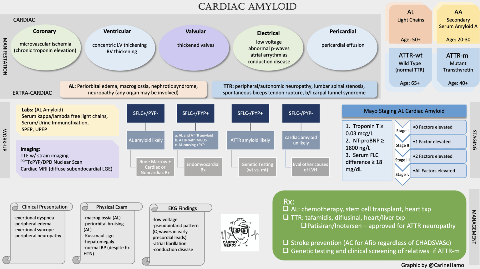 CardioNerds Cardiac Amyloid
